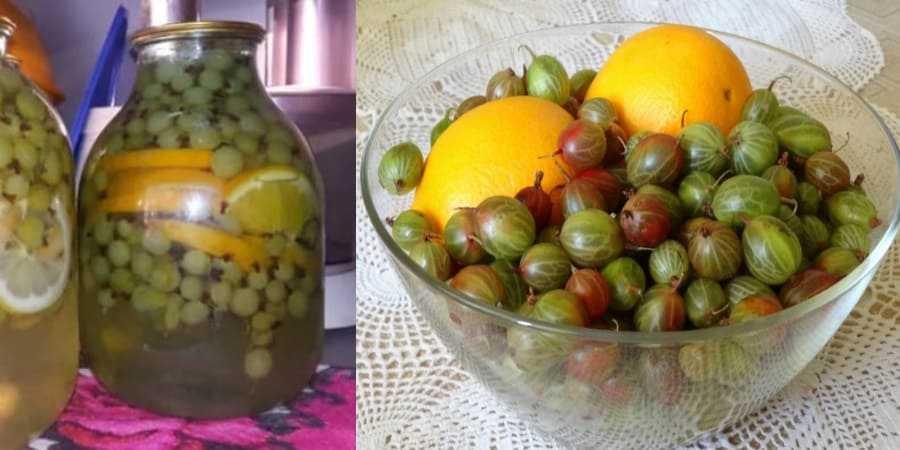 Компот из смородины: как сварить с крыжовником или клубникой, рецепты на 3-х литровую банку и как сделать напиток без стерилизации