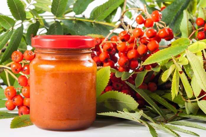 Варенье из красной рябины на зиму в домашних условиях. рецепты