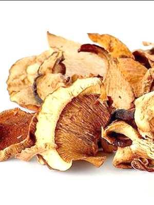 Как сушить грибы в домашних условиях: на нитке, в духовке, видео