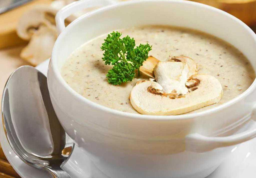 Суп-пюре из шампиньонов: описание рецепта, как приготовить грибной крем с курицей и картофелем, в мультиварке, диетический, из тыквы, брокколи, а также советы и фото