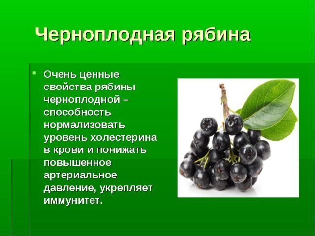 Рецепты и вкусные сочетания варенья из черноплодной рябины