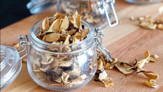 Как заморозить маслята на зиму в морозилке: рецепты приготовления в домашних условиях, обработка, подготовка грибов к заморозке