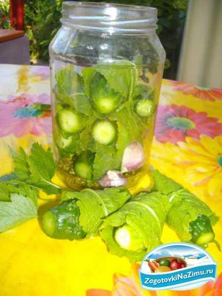 Как засолить огурцы в пластиковом ведре на зиму: лучшие рецепты засолки, как хранить соленые огурчики в такой таре