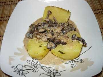 Грибной соус из шампиньонов, лисичек, вешенок и сушеных грибов, оригинальные рецепты с соусом