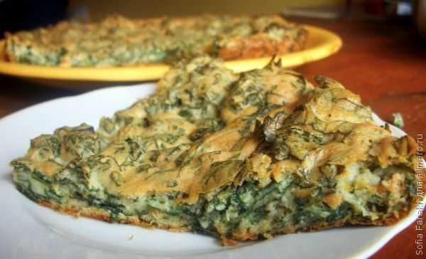 Каша из крапивы: ингредиенты, нюансы приготовления. Классические, армянские блюда, добавление тыквы и перловки. Пошаговые рецепты с фото.