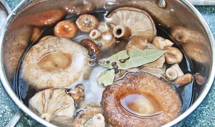 Как засолить грибы в домашних условиях, лучшие рецепты приготовления