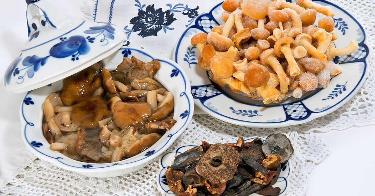 Способы как заморозить грибы на зиму в холодильнике: правила подготовки и заморозки в домашних условиях