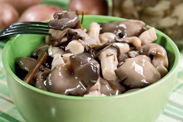 Салат с вешенками: рецепты с фото пошагово
