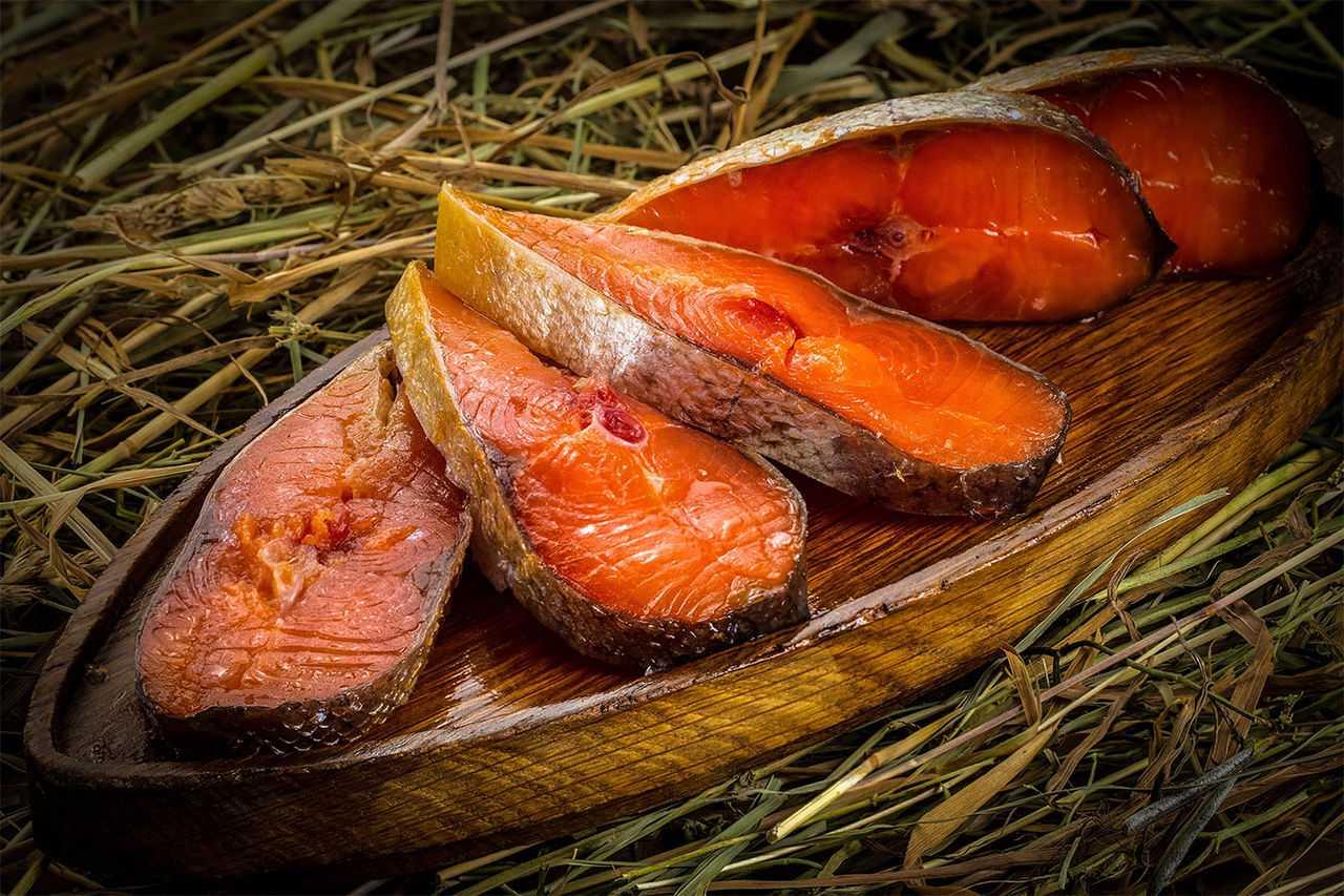 Холодное копчение рыбы, тонкости приготовления вкусного блюда