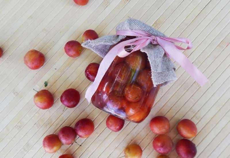 10 простых рецептов приготовления на зиму маринованной алычи в домашних условиях