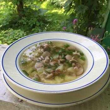 Суп с опятами