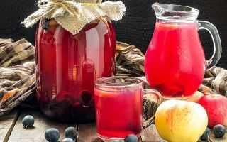 Как сделать вино из компота в домашних условиях?