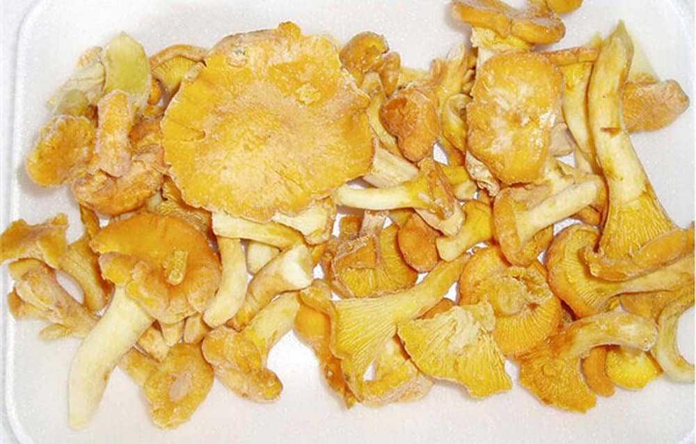 ᐉ сколько варить грибы перед заморозкой на зиму – можно ли морозить рыжики в свежем виде? - zooshop-76.ru