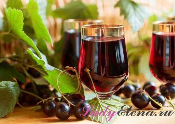 Наливка из черной смородины на водке или спирту - как приготовить в домашних условиях по рецептам с фото