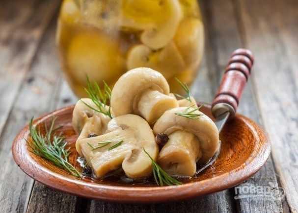Как засолить шампиньоны дома: рецепты соленых грибов для праздничного стола   хозяйка усадьбы