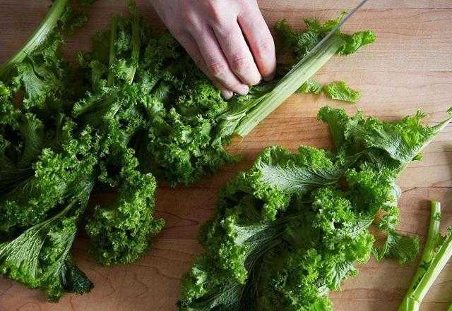 Как засолить зелень в банке. как заготовить петрушку, чтобы сохранить аромат и вкусовые качества неизменными