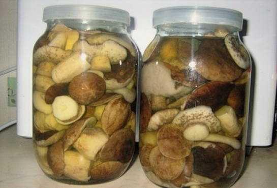 Как правильно и вкусно готовить подосиновики - грибы собираем
