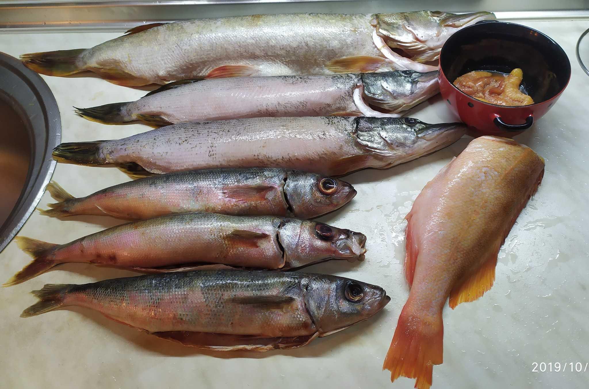 Холодное копчение рыбы: подготовка, засолка, хранение. как коптить рыбу холодного копчения в домашних условиях?