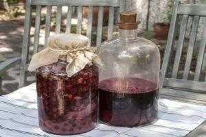 Вино из ревеня в домашних условиях: топ 6 простых рецептов приготовления