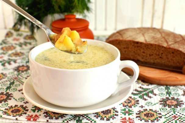 Как варить груздянку из свежих груздей: рецепты блюд с фото и видео