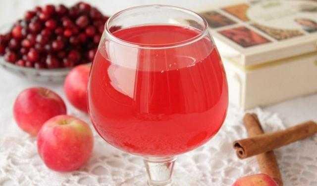 Вино из брусники в домашних условиях – 3 потрясающих рецепта