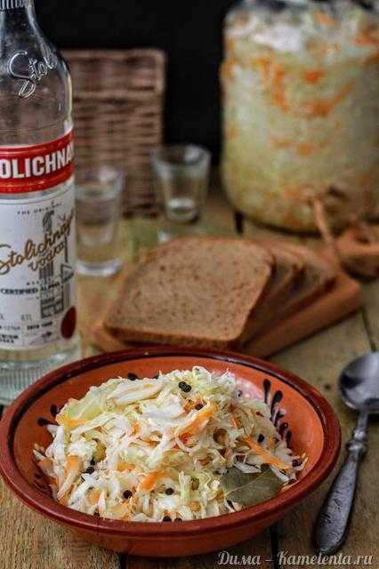 Маринованная капуста быстрого приготовления – 5 быстрых и очень вкусных рецептов