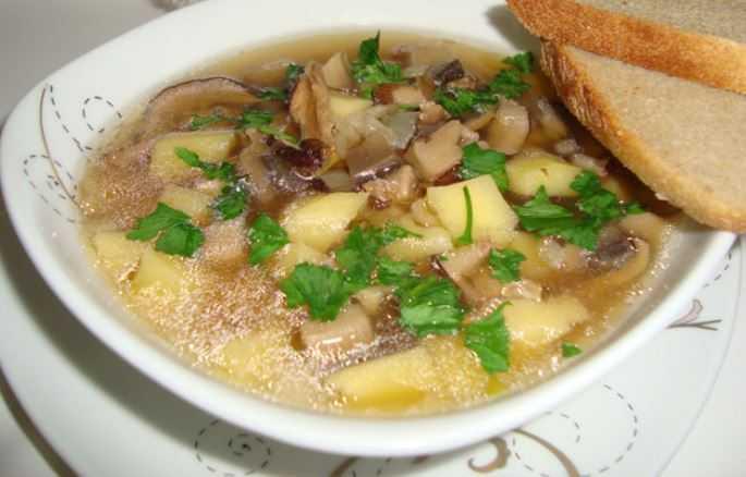 Суп-пюре из белых грибов: фото, рецепты, как приготовить грибные первые блюда