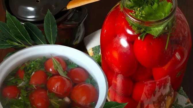 Соленые помидоры в ведре: самые вкусные рецепты
