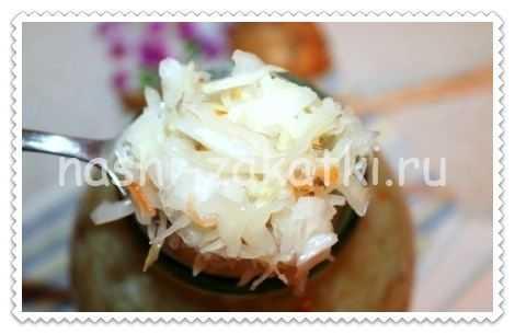 Тушеная квашеная капуста — 10 классических рецептов очень вкусной капусты