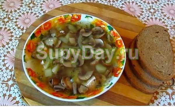 Куриный суп с грибами – готовить вкусно и легко: рецепт с фото и видео