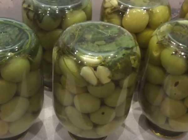 Зелёные помидоры на зиму. 6 рецептов вкусных заготовок