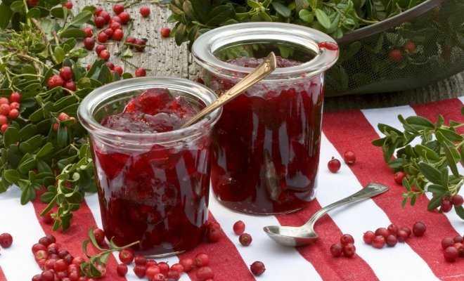 Хранение брусники на зиму в домашних условиях: 11 лучших пошаговых рецептов