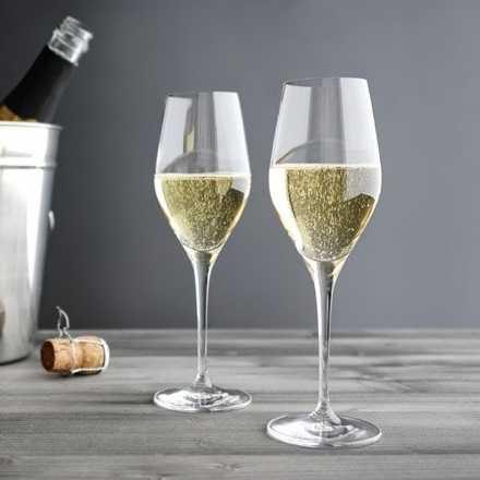 Вино из бузины — лучшие рецепты домашнего приготовления