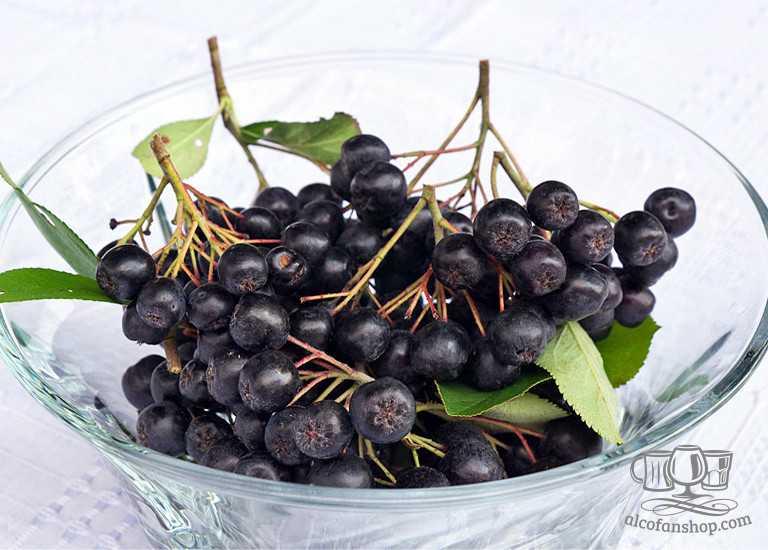 Настойка на черноплодной рябине на самогоне: водке или спирту
