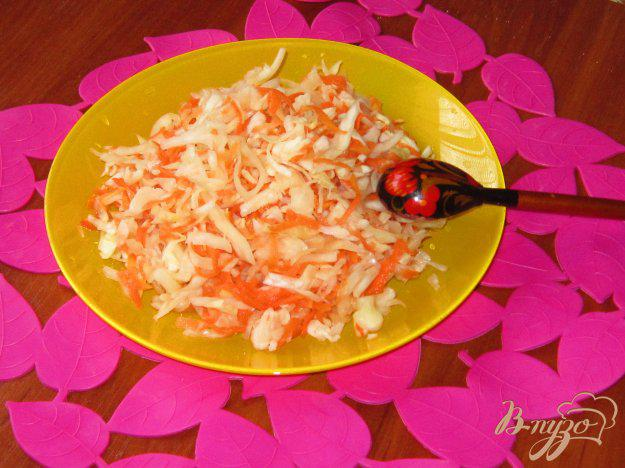 Квашеная капуста на зиму – очень вкусные рецепты