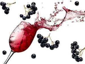 Настойка на черноплодной рябине на самогоне, водке или спирту