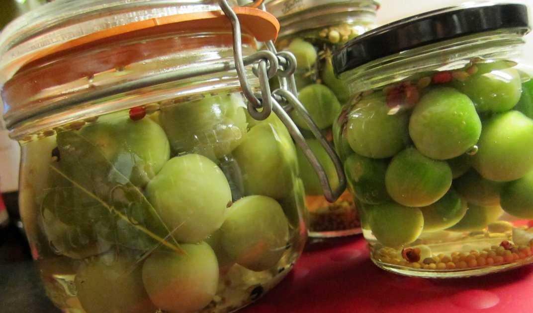 Маринованные зеленые помидоры с чесноком на зиму: лучшие рецепты приготовления.