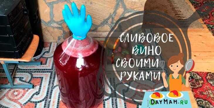 Вино из сливы в домашних условиях, простой рецепт | сабина - женский сайт обо всем