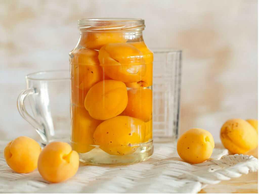 Апельсины на зиму: 53 рецепта заготовок » сусеки