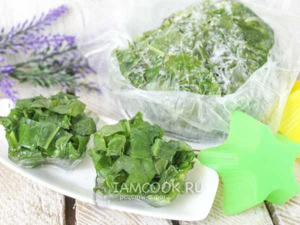 Как заморозить на зиму щавель в пакетах в домашних условиях