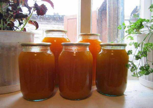Как варить сок в соковарке? сок в соковарке - рецепт :: syl.ru