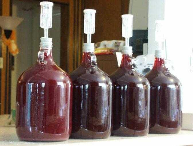 Вино из забродившего компота: как сделать, в домашних, рецепт