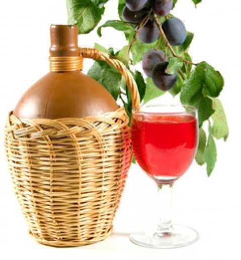 Простой рецепт вина из сливы в домашних условиях