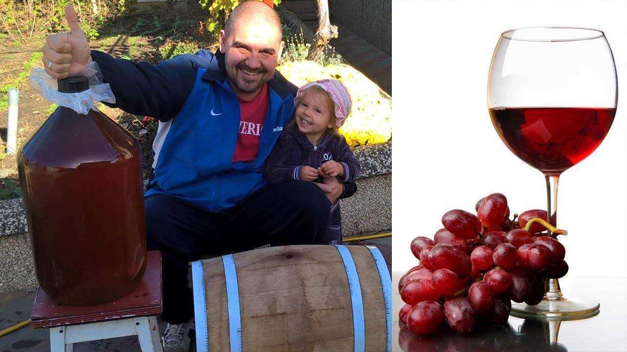 Вино из яблочного жмыха: можно ли приготовить из выжатых на сок яблок, как в домашних условиях сделать напиток по рецепту и правильно его употреблять?