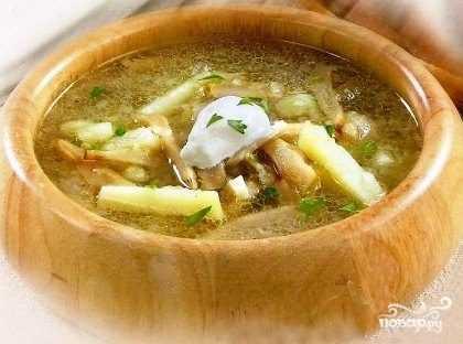 Грибные супы из груздей: фото и рецепты, как правильно приготовить первые блюда