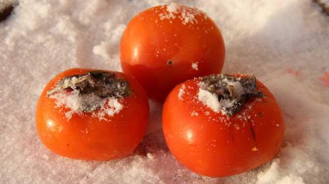 Заморозка фруктов и овощей на зиму в морозилке