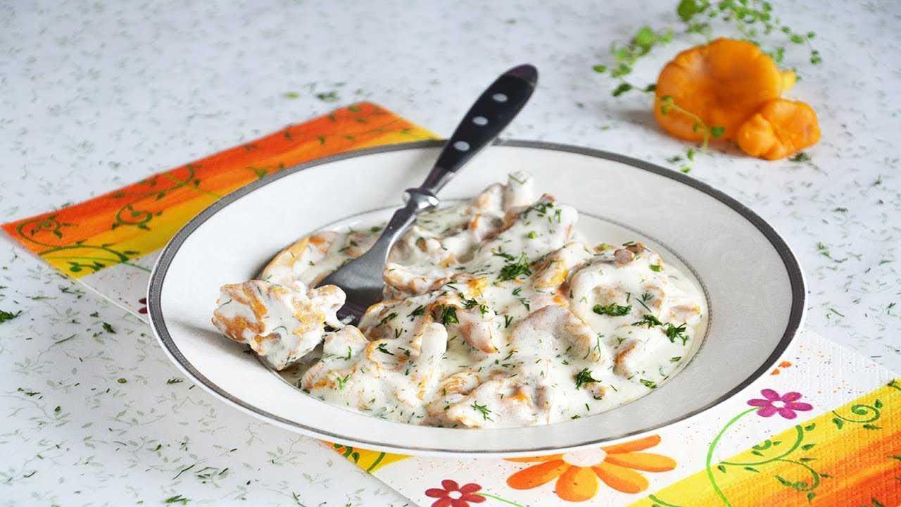 Куриное филе в сметанном соусе с грибами – 7 рецептов