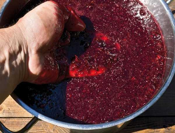 Смородиновое вино: 12 рецептов в домашних условиях