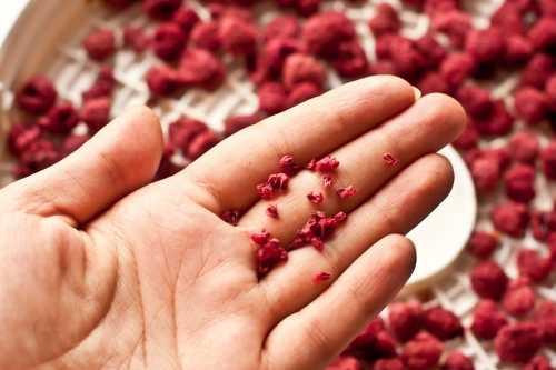 Сушеный топинамбур: польза и вред натурального продукта. Основные правила сушки, различная технология этого процесса. Условия хранения сушеного продукта.