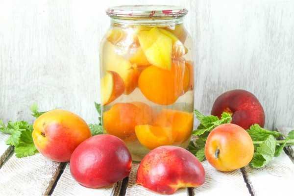 Компот из персиков без косточек на зиму - 8 пошаговых фото в рецепте